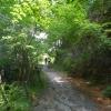 gardasee-2012-lago-di-tenno-297